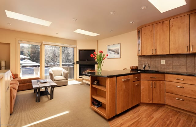 835 E Durant Avenue - 835 East Durant Avenue, Aspen, CO 81611