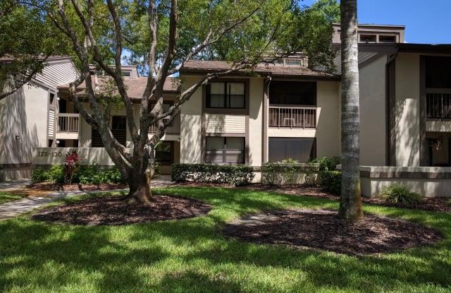 129 Woodlake Wynde - 129 Woodlake Wynde, East Lake, FL 34677