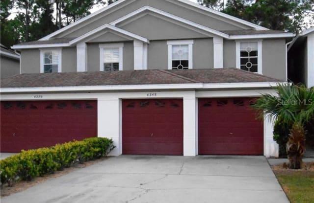 4348 BROOKER CREEK DRIVE - 4348 Brooker Creek Drive, East Lake, FL 34685