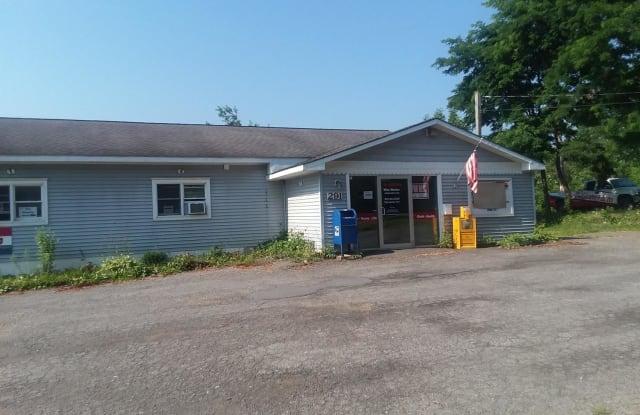291 Chestnut Street - 291 Chestnut Street, Oneonta, NY 13820