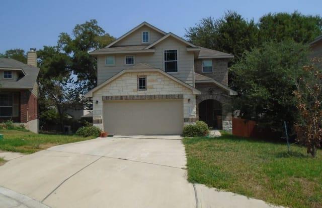 9008 Postvine Drive - 9008 Postvine Drive, Austin, TX 78724