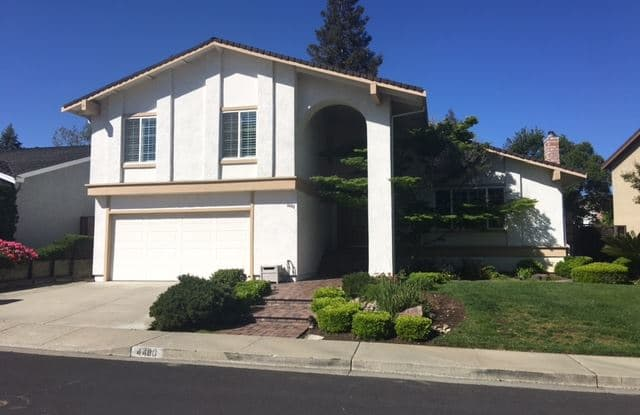 4480 Silverberry Ct. - 4480 Silverberry Court, Concord, CA 94521