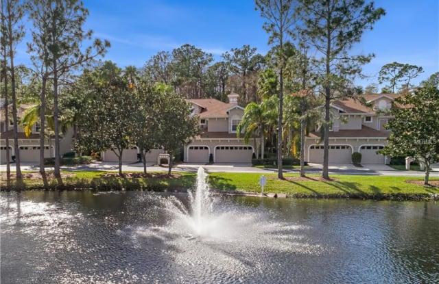 4242 PRESERVE PLACE - 4242 Preserve Place, East Lake, FL 34685