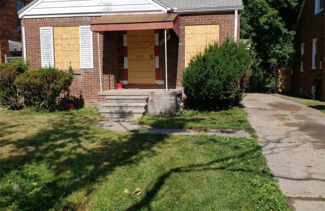 10901 McKinney Street - 10901 Mckinney Street, Detroit, MI 48224