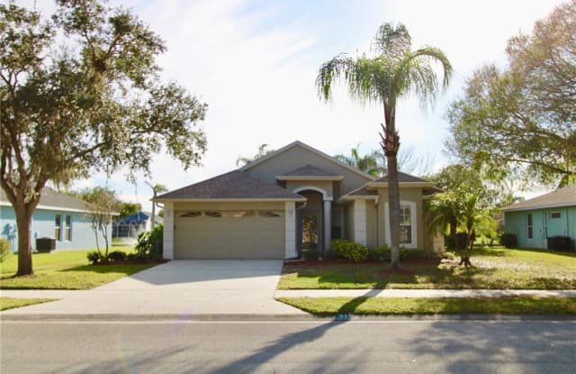 317 FOUNTAINVIEW CIRCLE - 317 Fountainview Circle, Oldsmar, FL 34677