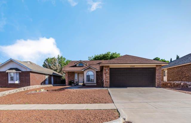 7337 DESIERTO RICO Avenue - 7337 Desierto Rico Avenue, El Paso, TX 79912