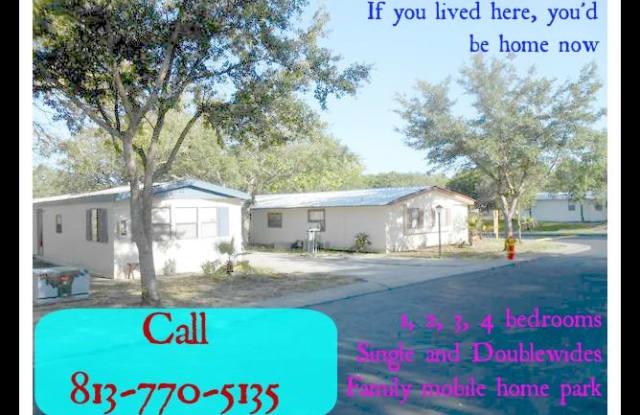 Livingston Family Community - 15884 Martha Circle, Lutz, FL 33549