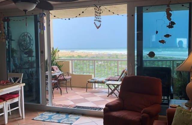 257 Minorca Beach Way - 257 Minorca Beach Way, New Smyrna Beach, FL 32169