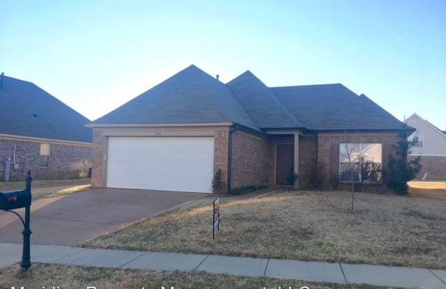 1161 Cortona Circle Memphis Tn Apartments For Rent