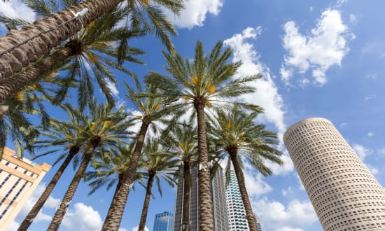 20 Best Apartments Under $900 in Tampa, FL (with pictures)!