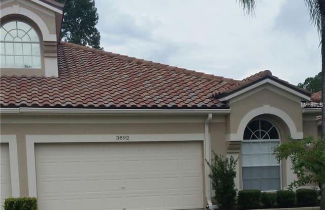3892 TIMBER RIDGE COURT - 3892 Timber Ridge Court, East Lake, FL 34685