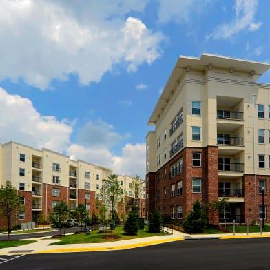 Allure Apollo Apartments For Rent