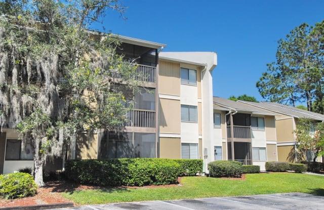 Stone Creek - 13275 Arbor Pointe Circle, Temple Terrace, FL 33617
