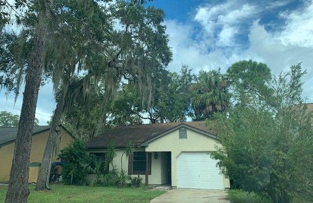 19596 Kapok Court - 19596 Kapok Court, Port Charlotte, FL 33952