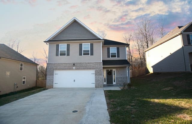 1016 Black Oak Cir - 1016 Black Oak Cir, Clarksville, TN 37042
