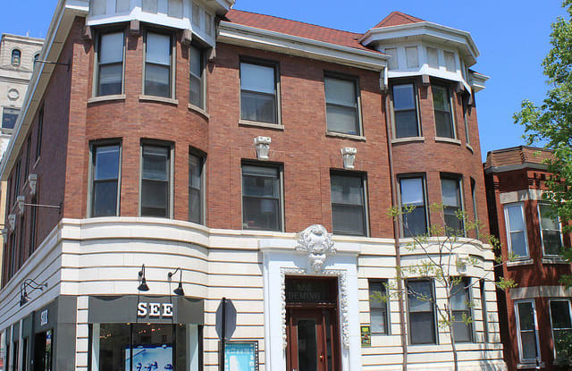 482 W. Deming - 482 W Deming Pl, Chicago, IL 60614