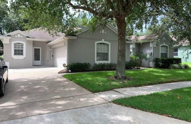553 Hiawatha Palm Pl - 553 Hiawatha Palm Place, Apopka, FL 32712