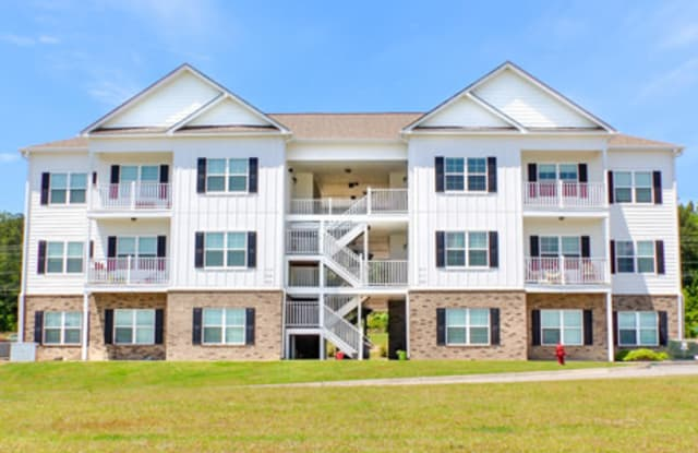 The Vista Apartments - 707 Turnstone Drive, Warrenville, SC 29851