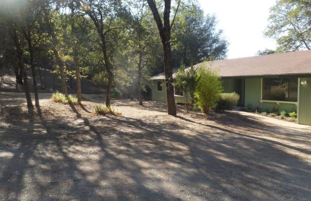 23034 Spyglass Ct - 23034 Spyglass Court, Lake of the Pines, CA 95602