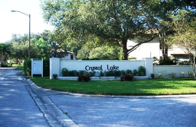 3380 CRYSTAL COURT E - 3380 Crystal Court East, East Lake, FL 34685