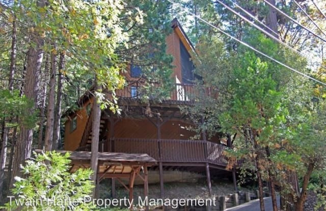 18518 Wildwood Dr - 18518 Wildwood Drive, Twain Harte, CA 95383