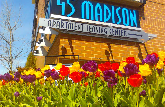 45 Madison - 4445 Madison Ave, Kansas City, MO 64111
