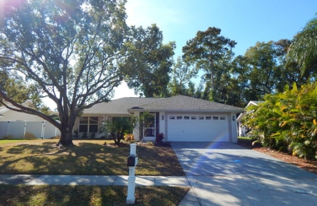 2702 Wendover Terrace - 2702 Wendover Terrace, East Lake, FL 34685
