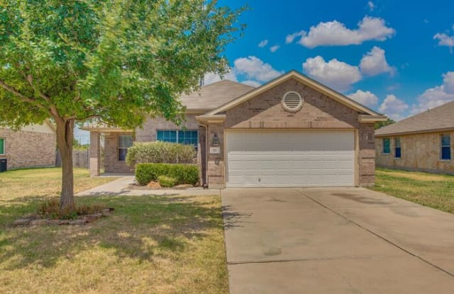 311 Gainer Drive - 311 Gainer Drive, Hutto, TX 78634