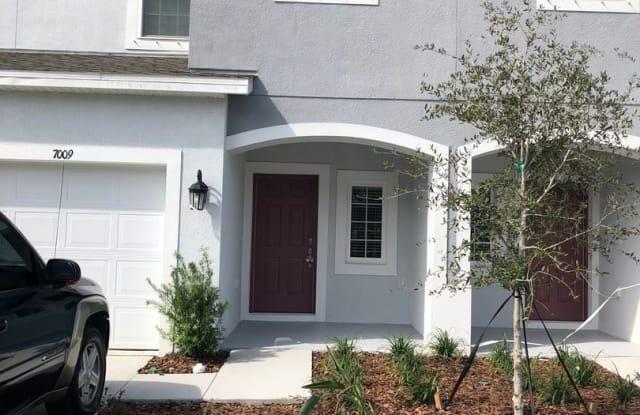 7009 Summer Holly Place - 7009 Summer Holly Pl, Progress Village, FL 33578