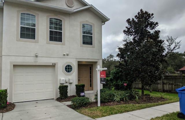 9501 Ashburn Creek Ln. - 9501 Ashburn Lake Drive, East Lake-Orient Park, FL 33610
