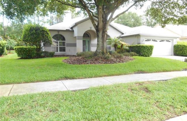 3833 SIENA LANE - 3833 Siena Lane, East Lake, FL 34685