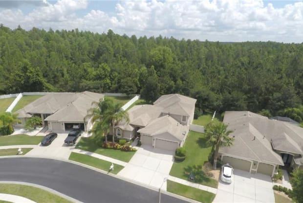 1726 BEACONSFIELD DRIVE - 1726 Beaconsfield Drive, Wesley Chapel, FL 33543
