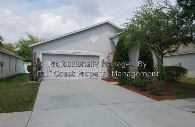 2217 Roanoke Springs Drive - 2217 Roanoke Springs Drive, Ruskin, FL 33570
