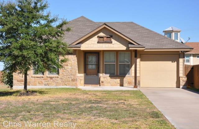 212 Azurite Drive - 212 Azurite Drive, Williamson County, TX 76537