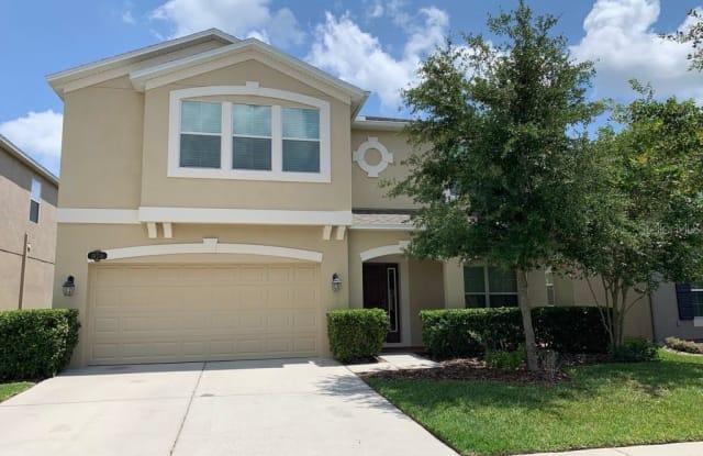 10716 PICTORIAL PARK DRIVE - 10716 Pictorial Park Drive, Tampa, FL 33647