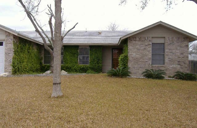 125 Tenderfoot Trl - RENTAL - 125 Tenderfoot Trl, Del Rio, TX 78840