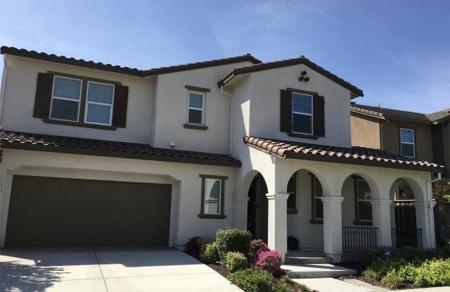 318 Wyatt Drive - 318 W Wyatt Dr, Mountain House, CA 95391