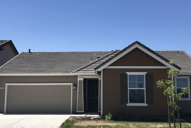 336 Red Lion Way - 336 Red Lion Way, Newman, CA 95360