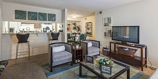 100 Best Apartments Under $800 In Houston, TX (with pics)!