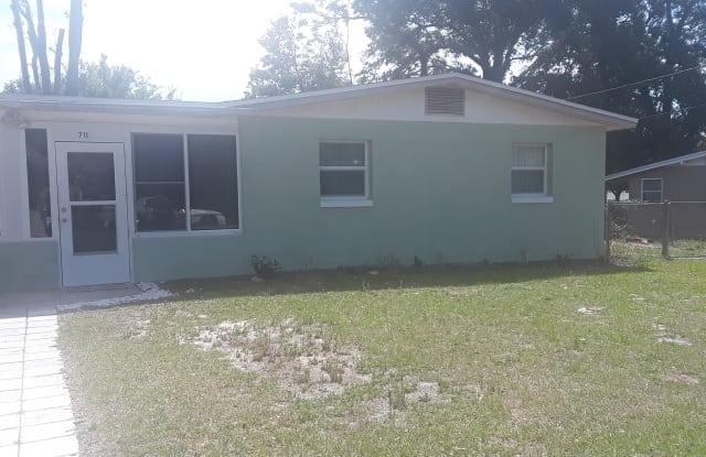 711 Plumosa Ave - 711 Plumosa Avenue, Fruitland Park, FL 34731