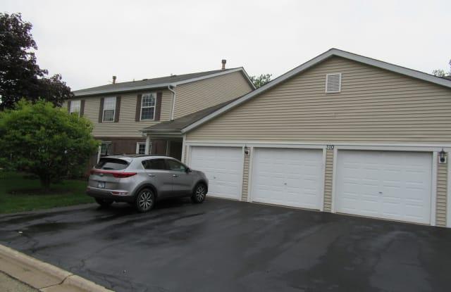 310 Newport Lane - 310 Newport Lane, Bartlett, IL 60103