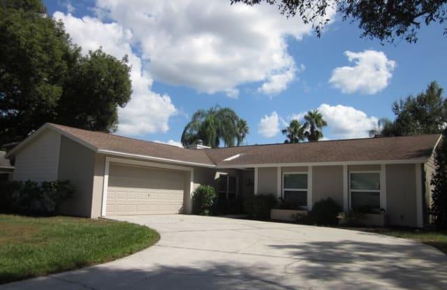 16413 Bonneville Dr - 16413 Bonneville Drive, Northdale, FL 33624