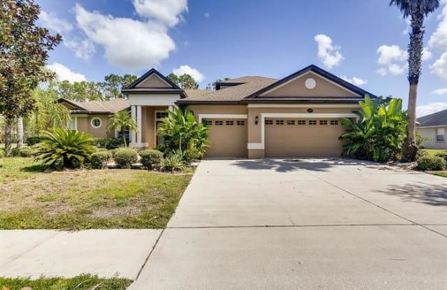 16703 Whispering Glen Drive - 16703 Whispering Glen Drive, Northdale, FL 33558