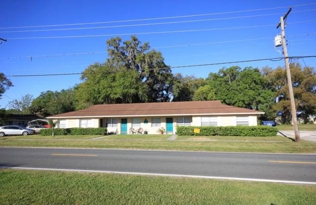 12619 Curley Street - 12619 Curley Street, San Antonio, FL 33576