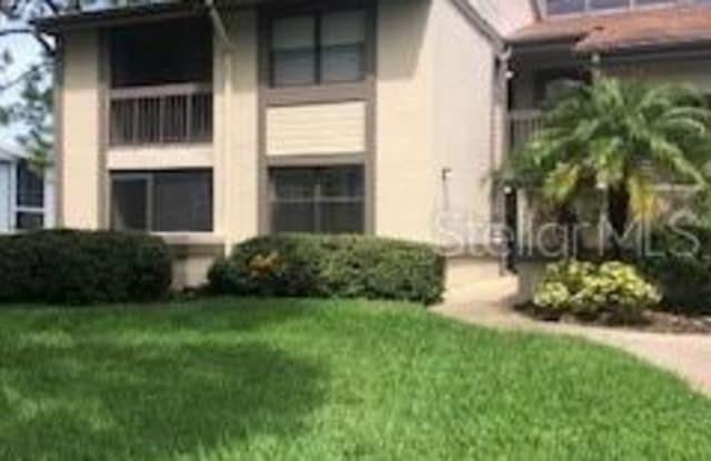 335 WOODLAKE WYNDE - 335 Woodlake Wynde, East Lake, FL 34677