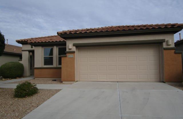 13797 E Carruthers Street - 13797 East Carruthers Street, Vail, AZ 85641