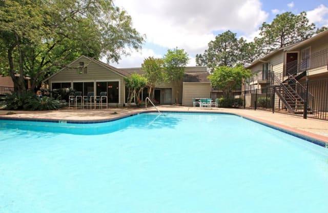 Rockridge Springs - 17435 Imperial Valley Dr, Houston, TX 77060