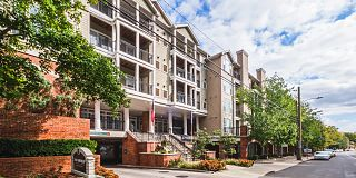 79 1 Bedroom Apartments For Rent In Stamford, CT