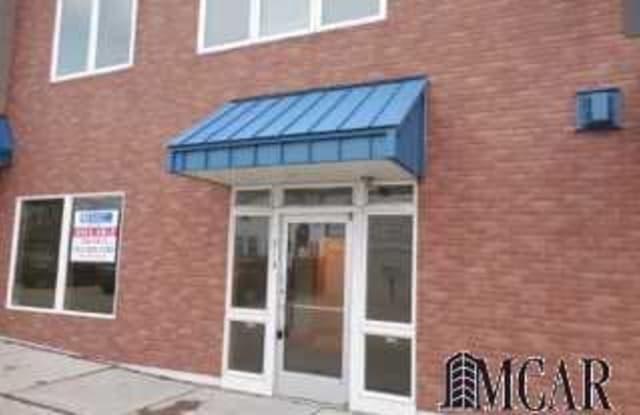 313 S MONROE ST - 313 S Monroe St, Monroe, MI 48161