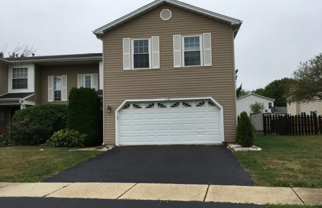 1102 Southbridge Lane - 1102 Southbridge Court, Schaumburg, IL 60194